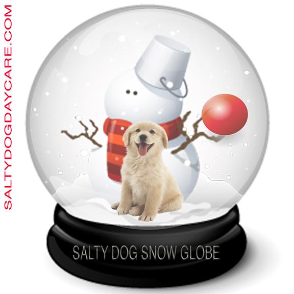 salty dog snow