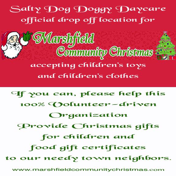marshfield community christmas